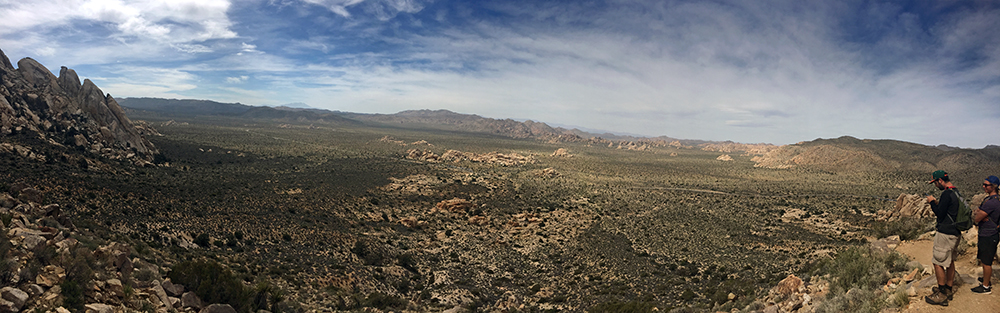 Panorama of Joshua Tree National Park.