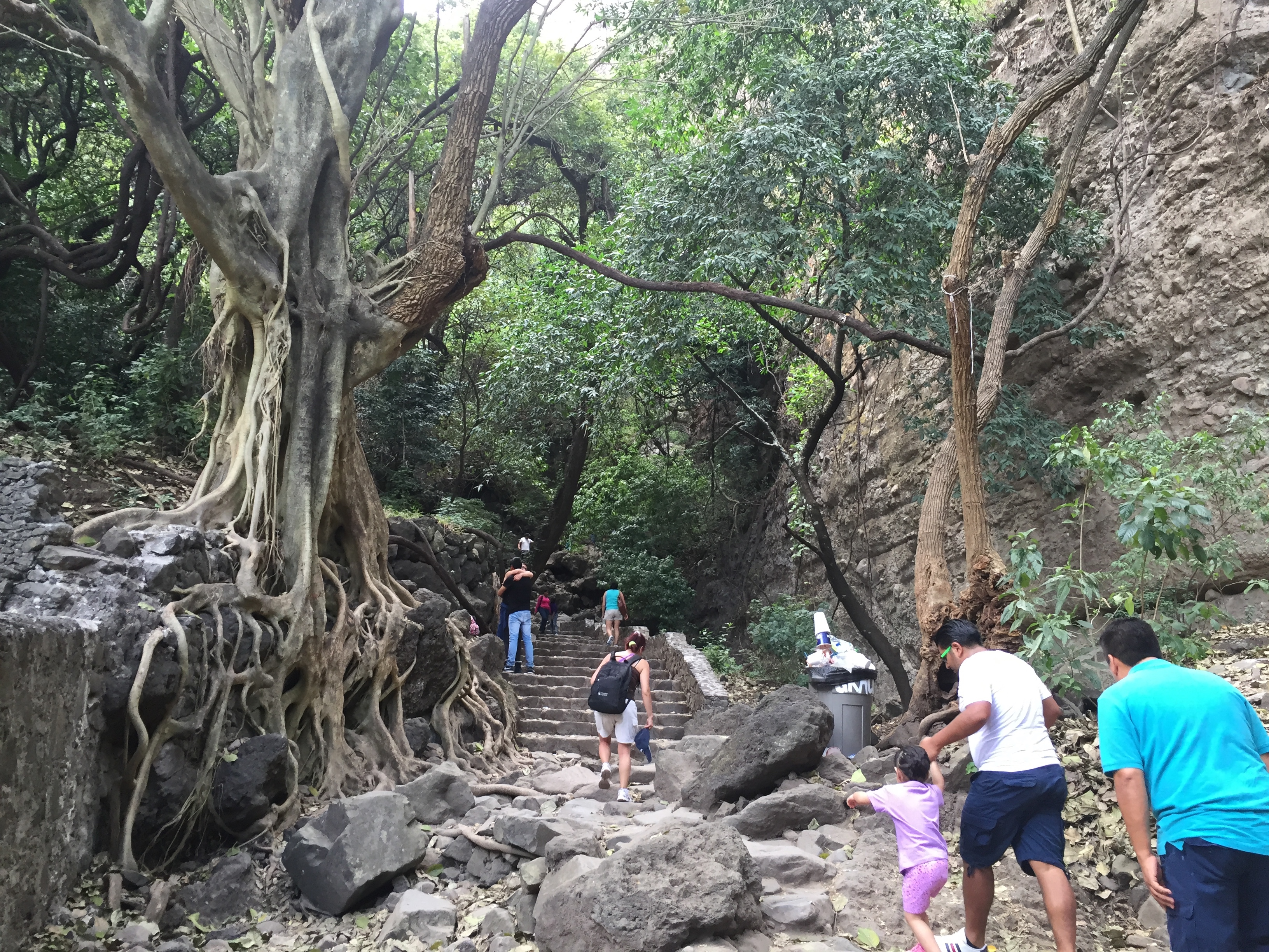 Tourists walk through the jungle of Tepoztlan, Mexico.
