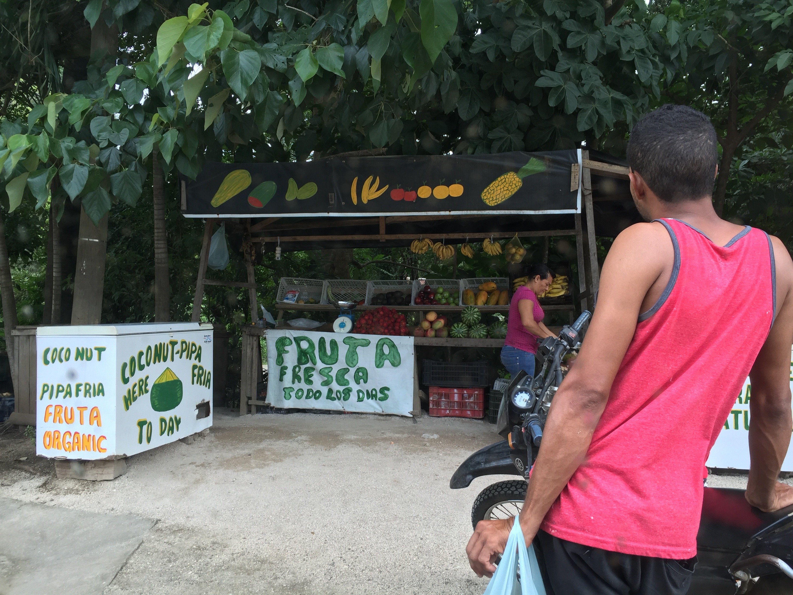 A fruit stand on the side of the road in Costa Rica.