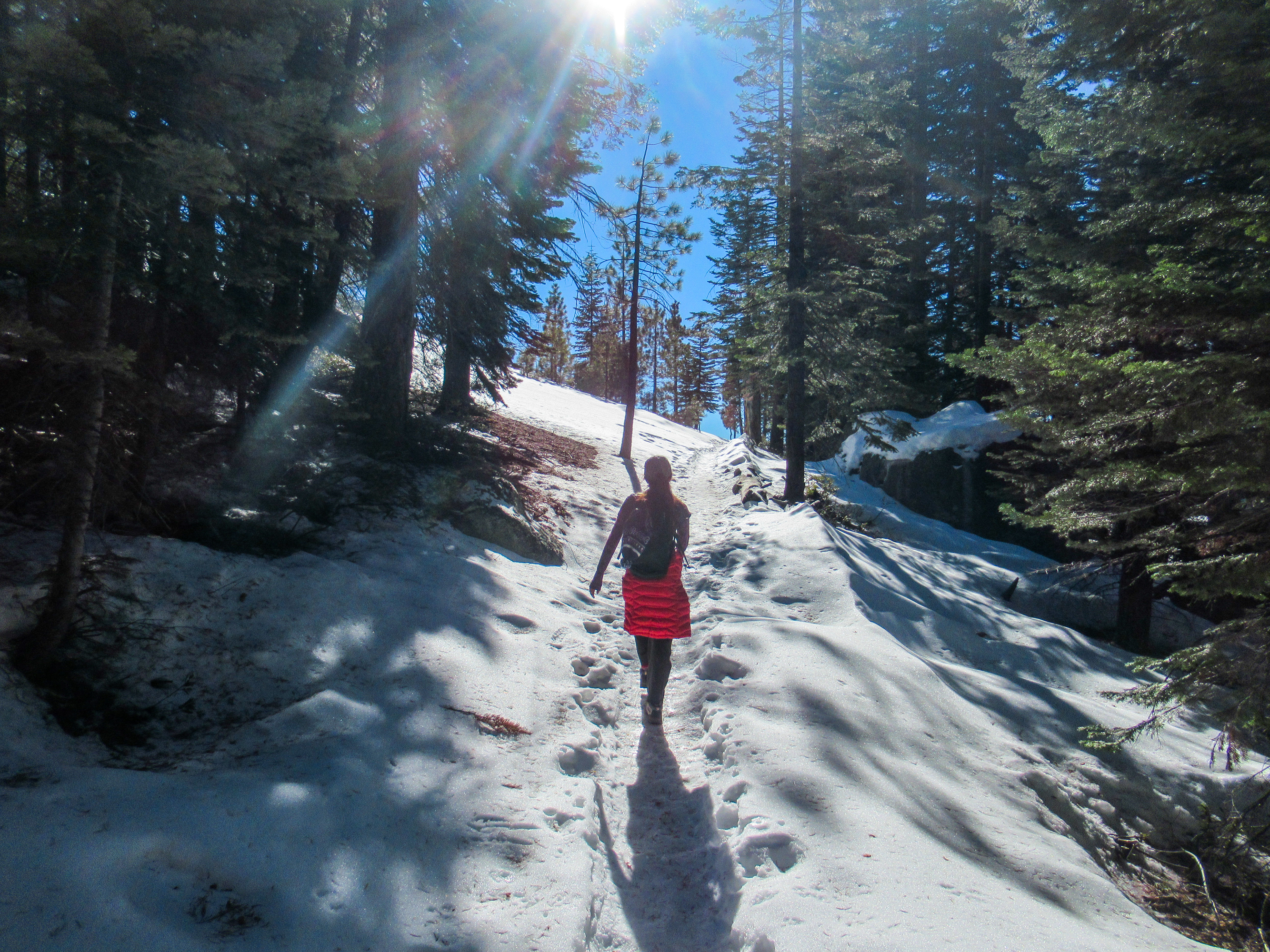 A snowy trail winds between trees above Yosemite Falls.