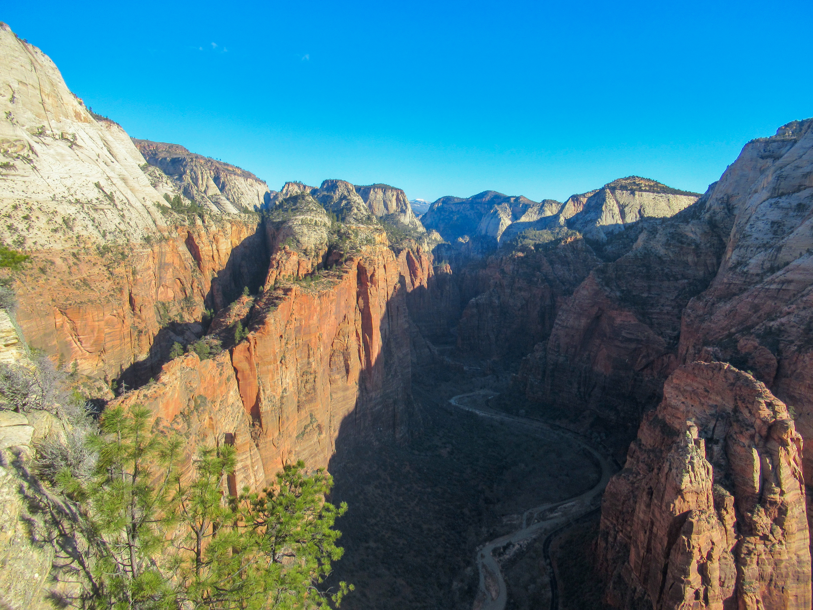 Zion Valley as seen from Angels Landing.