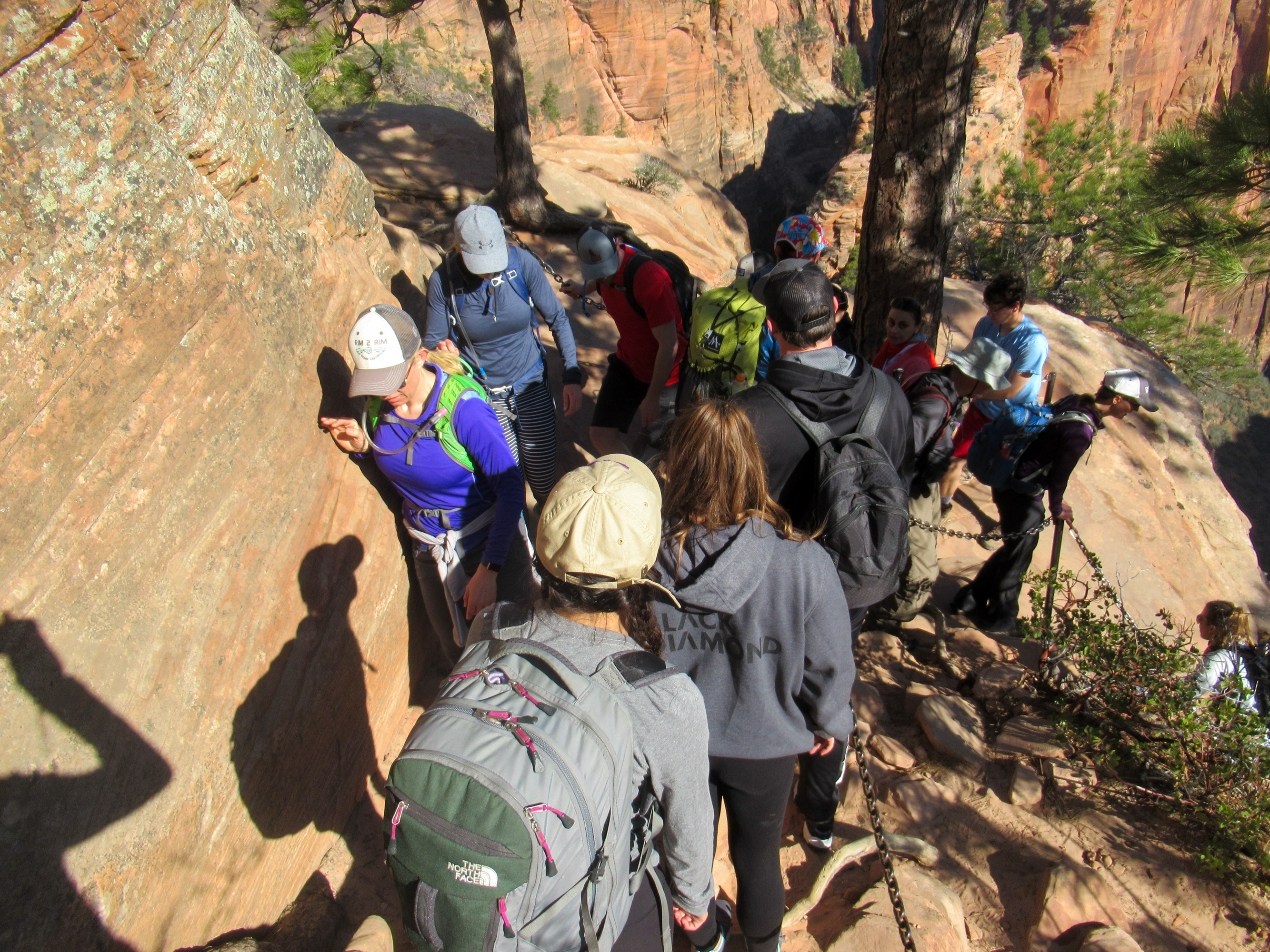 Crowded trail to Angels Landing in Zion.