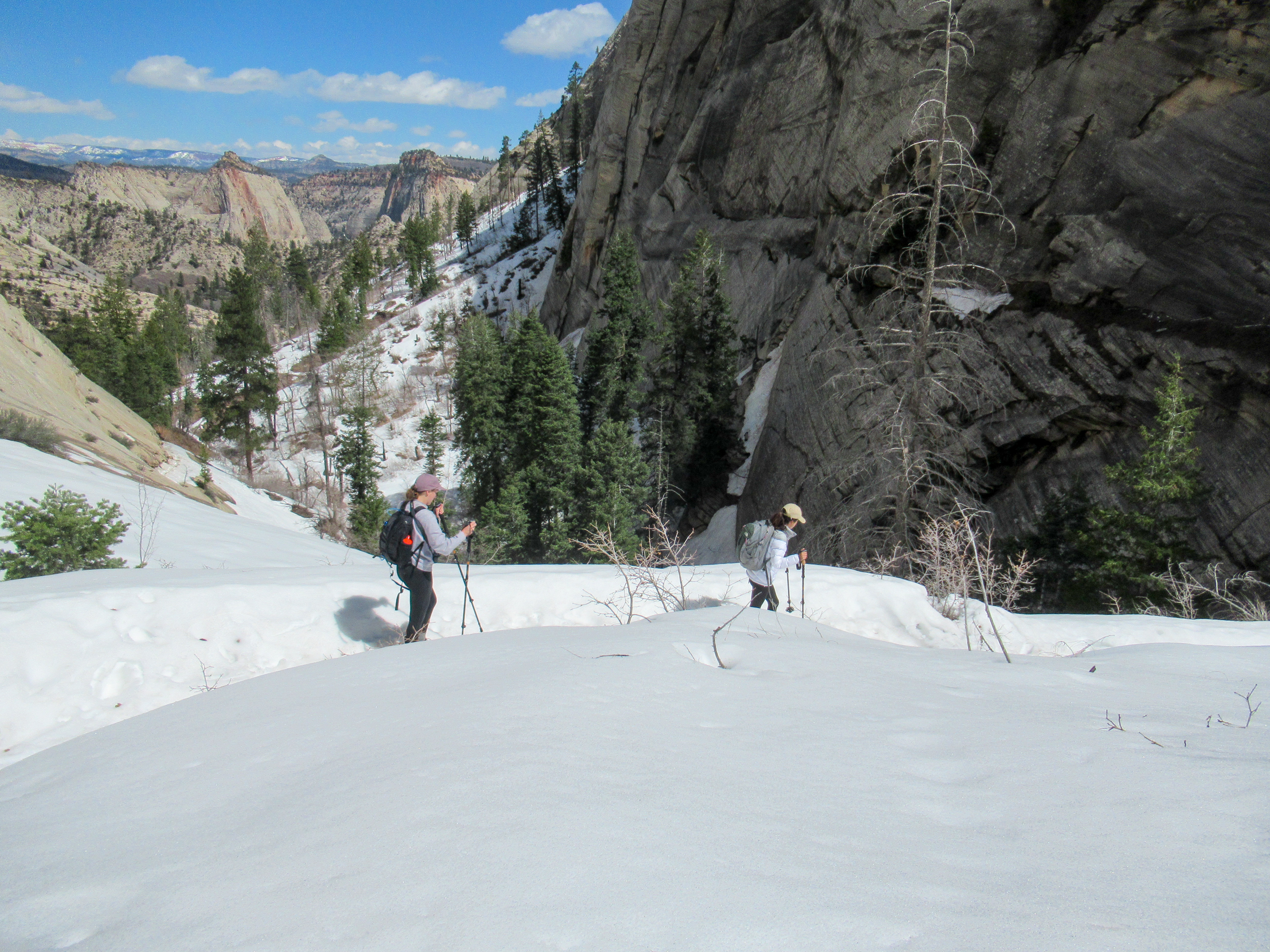Snowfield in the area known as Little Siberia in Zion Canyon.