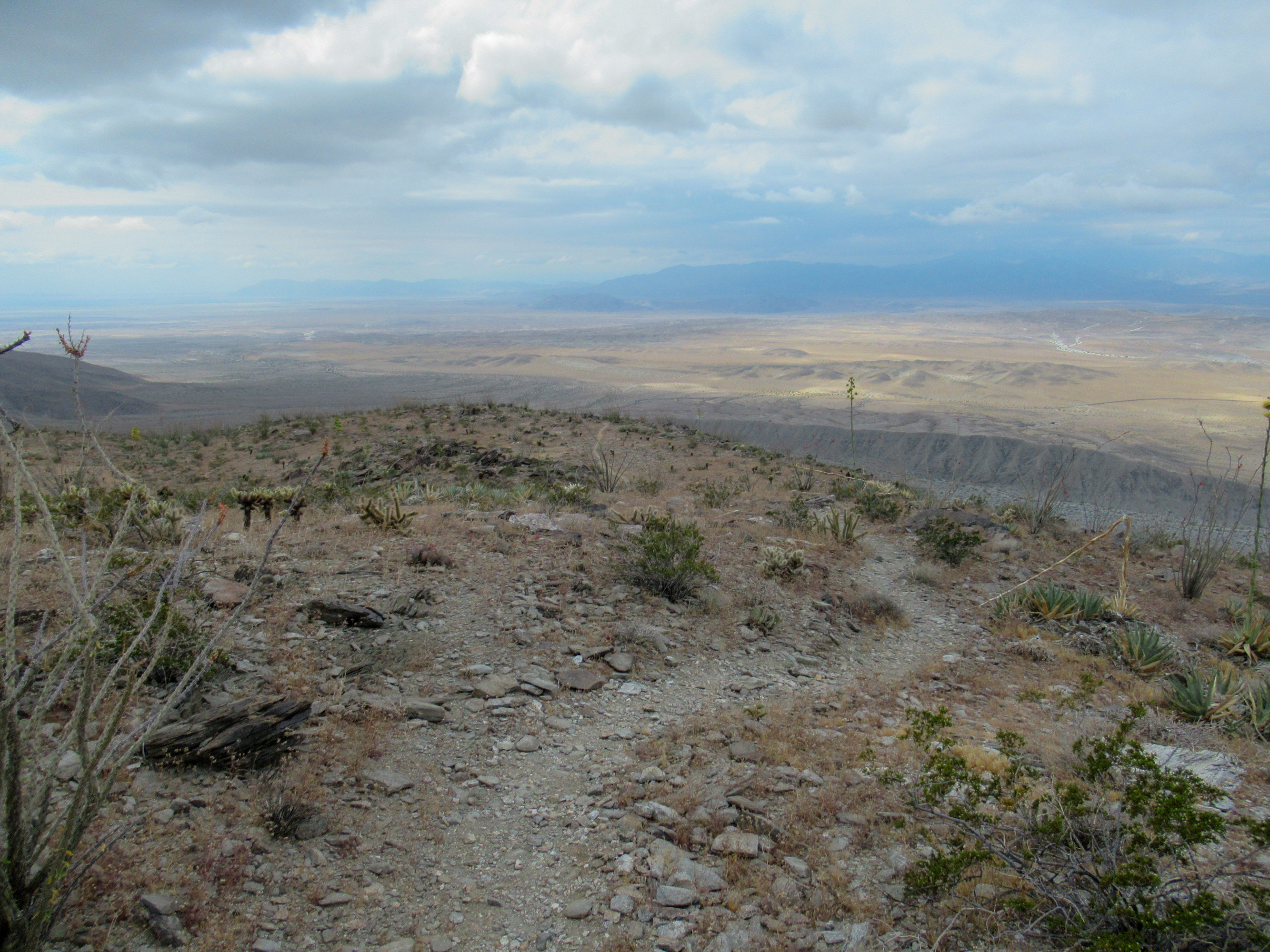 Trail to Rabbit Peak in Anza Borrego.