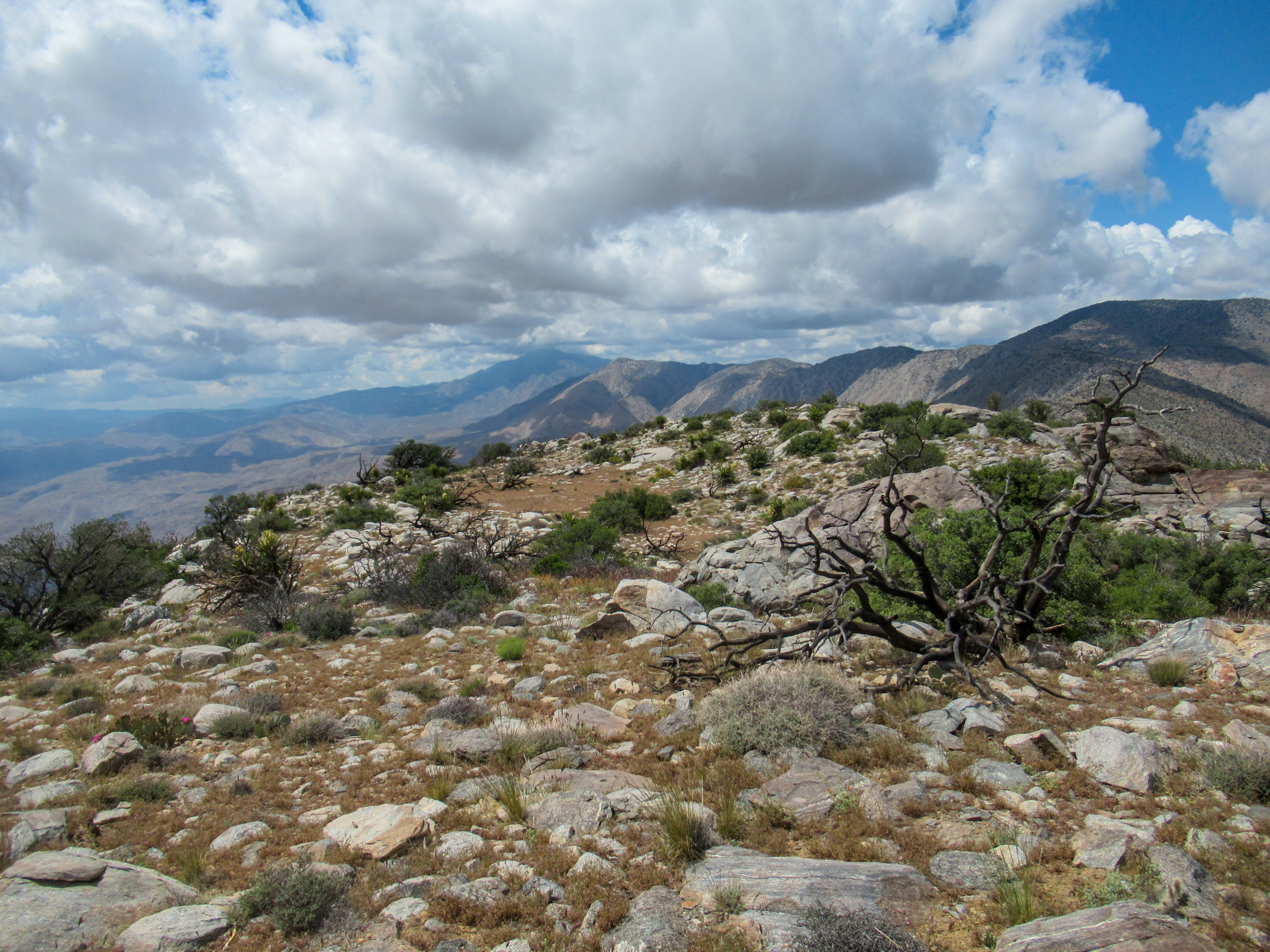 Dark Clouds over the Santa Rosa mountains of Anza Borrego.