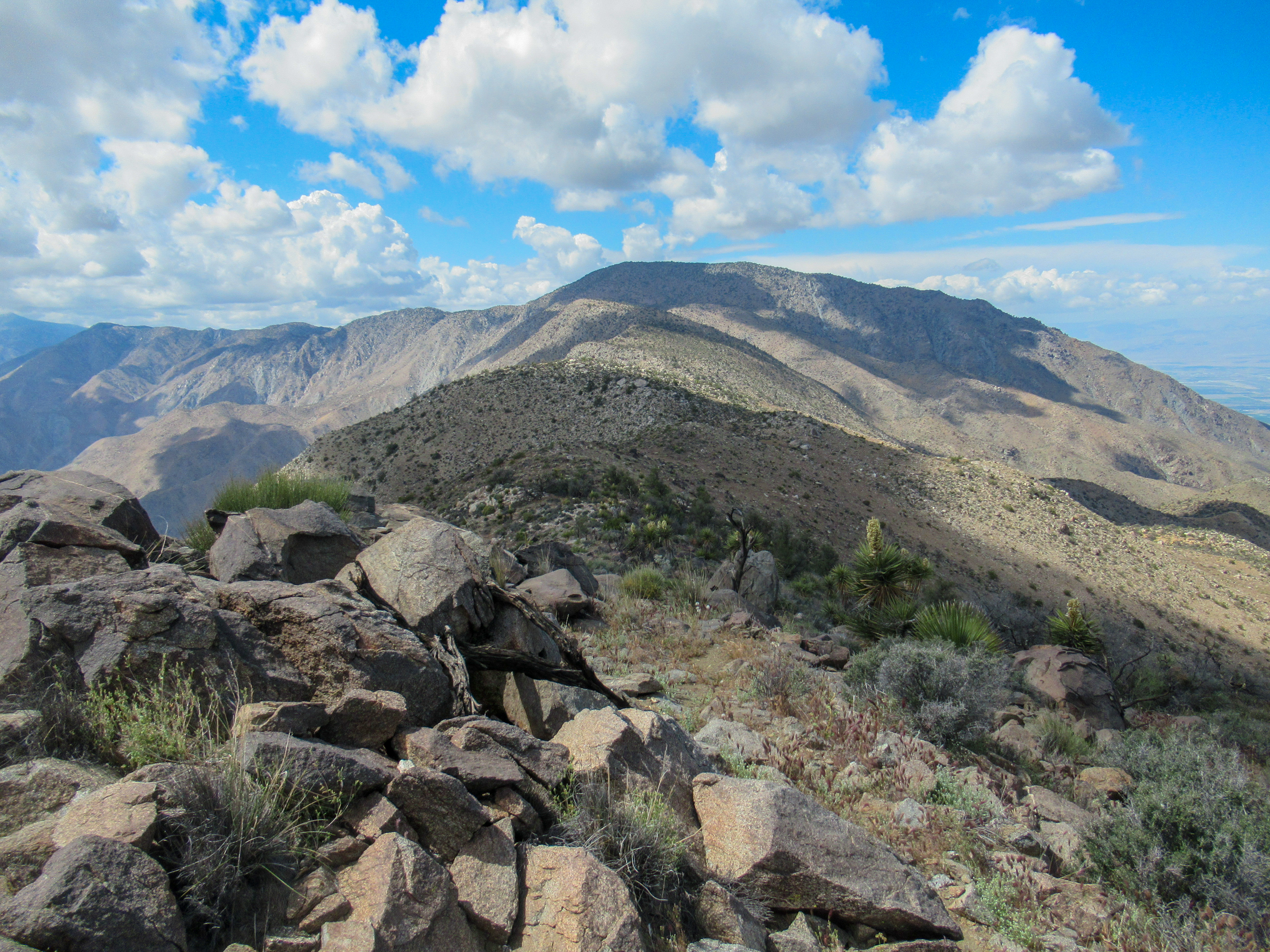 Ridge to Rabbit Peak.
