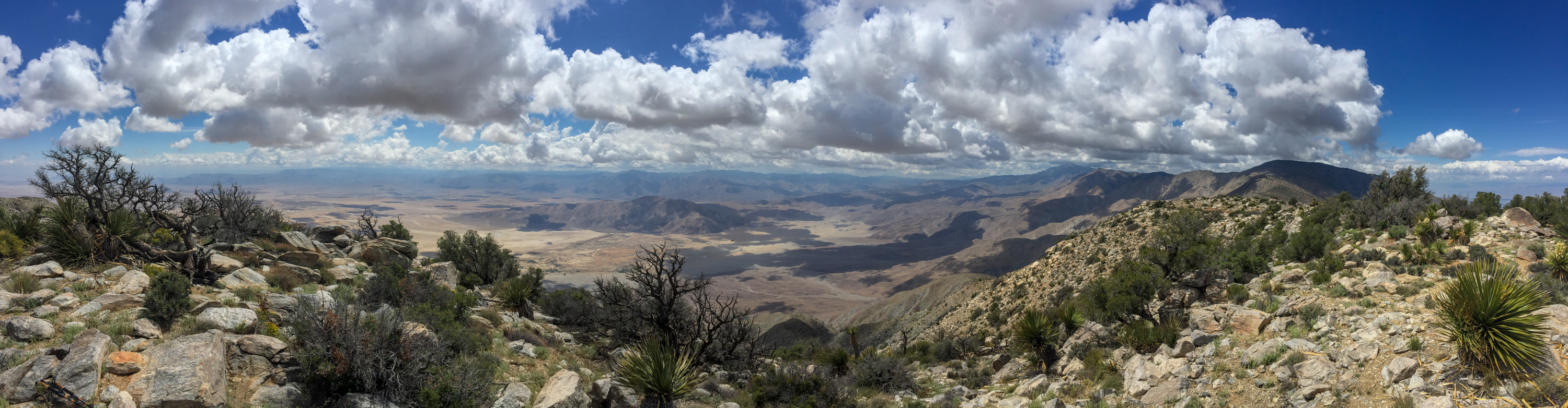 Panoramic view of the Anza Borrego Desert.