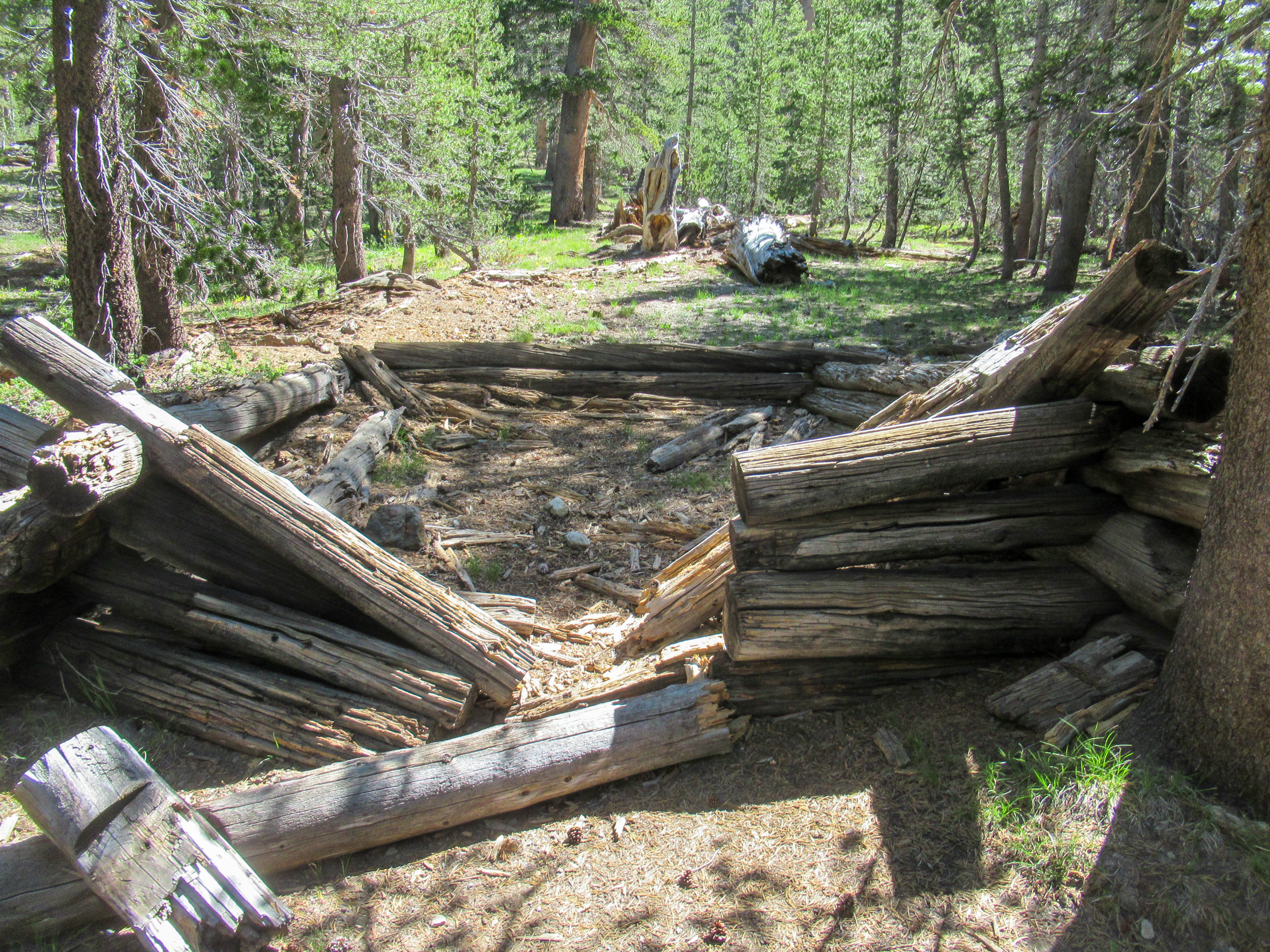 Old mining log cabin near Mono Pass in Yosemite.