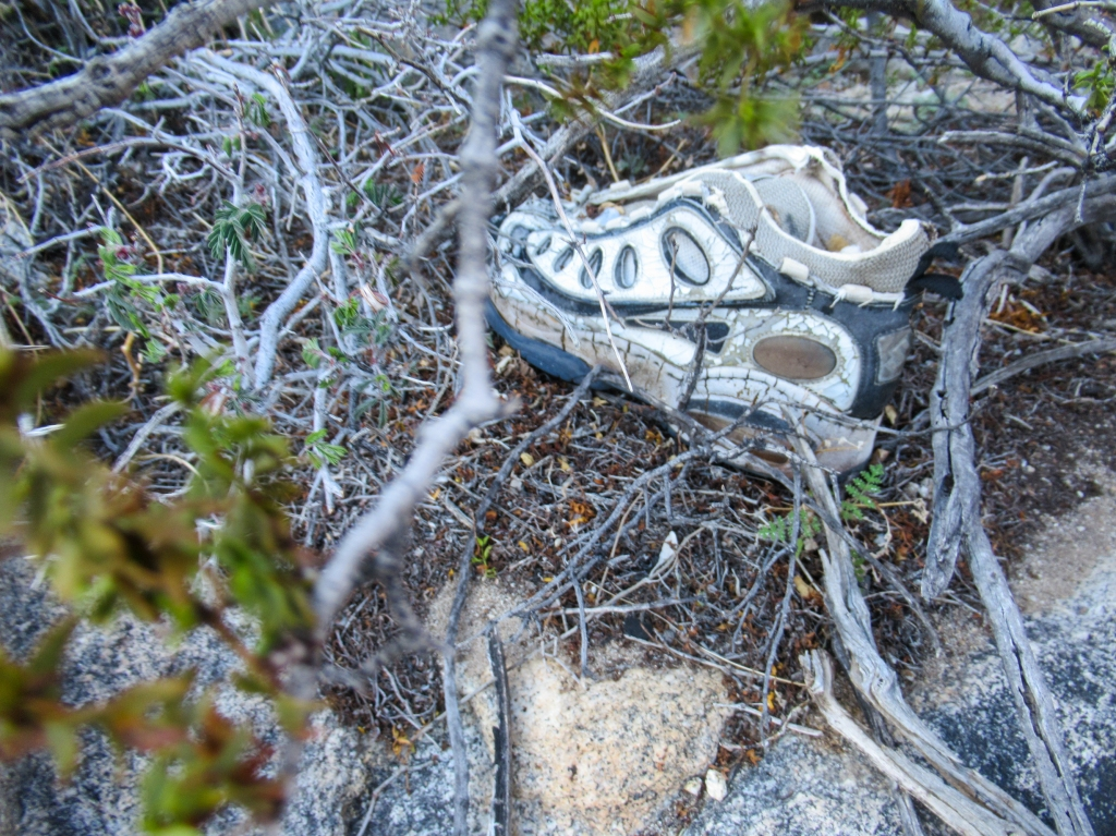A shoe left behind near the Mexican border.