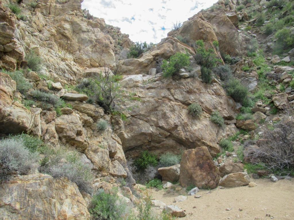 Goat Canyon Anza Borrego.