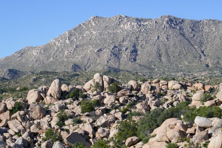 Jacumba Peak.