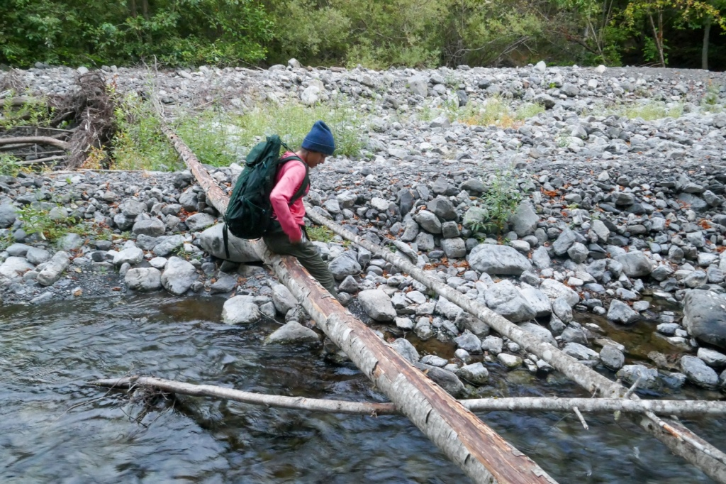 Madison Snively crosses a log that has fallen over a creek.