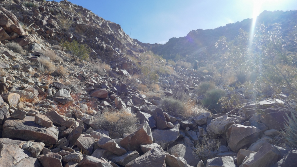A steep boulder gully in the Fish Creek Mountains.